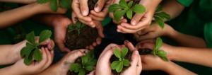 kids-planting-hands-800-849x300